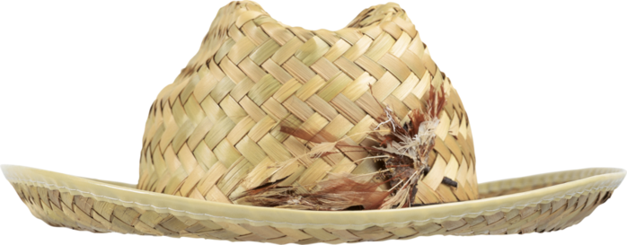 made from natural or artificial straw hats